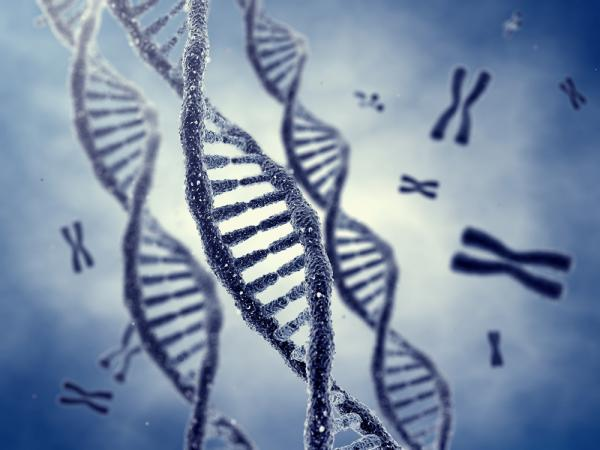 Genetic faults caused by trauma, poor lifestyle can be passed down to future generations: Study