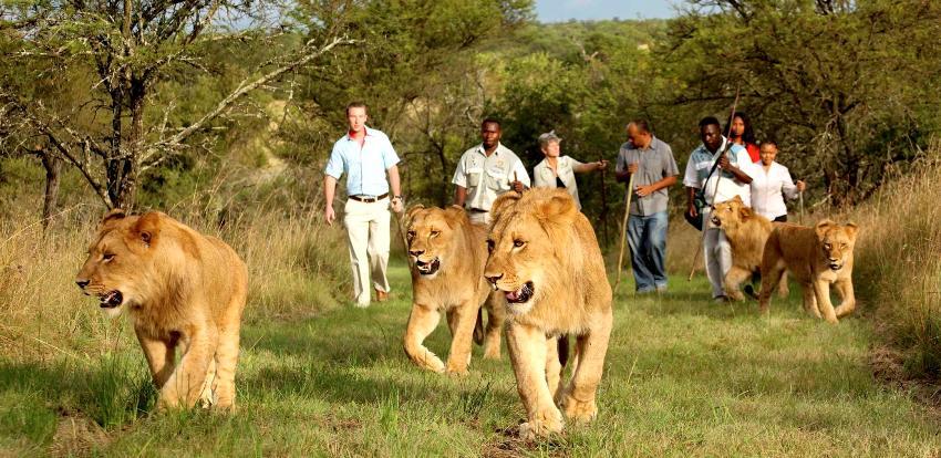 Wildlife & environment film fest to bring 250 films
