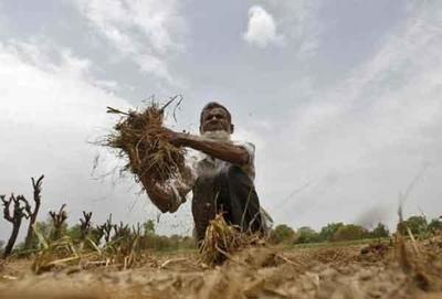 No possibility of rain till Nov 16 in Odisha