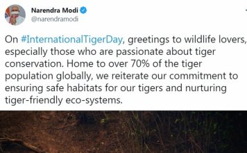 India doubles tiger numbers 4 yrs ahead of schedule, PM greets wildlife lovers