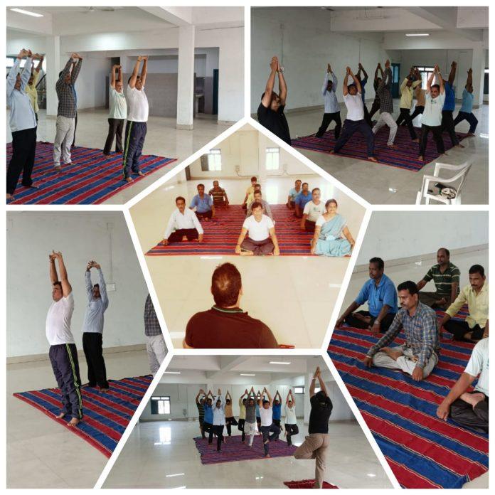 Paradip Port Trust celebrates International Day of Yoga